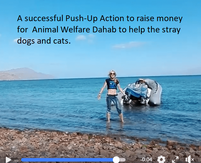 Good Cause Action by Margareth Nannenberg (MarsConnects) to help Animal Welfare Dahab
