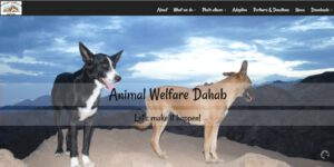 Website Animal Welfare Dahab